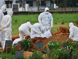 Waspada Virus Nipah Jadi Pandemi, Tingkat Kematian Capai 75%